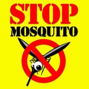Ponga mosquiteras y adiós mosquitos!!!