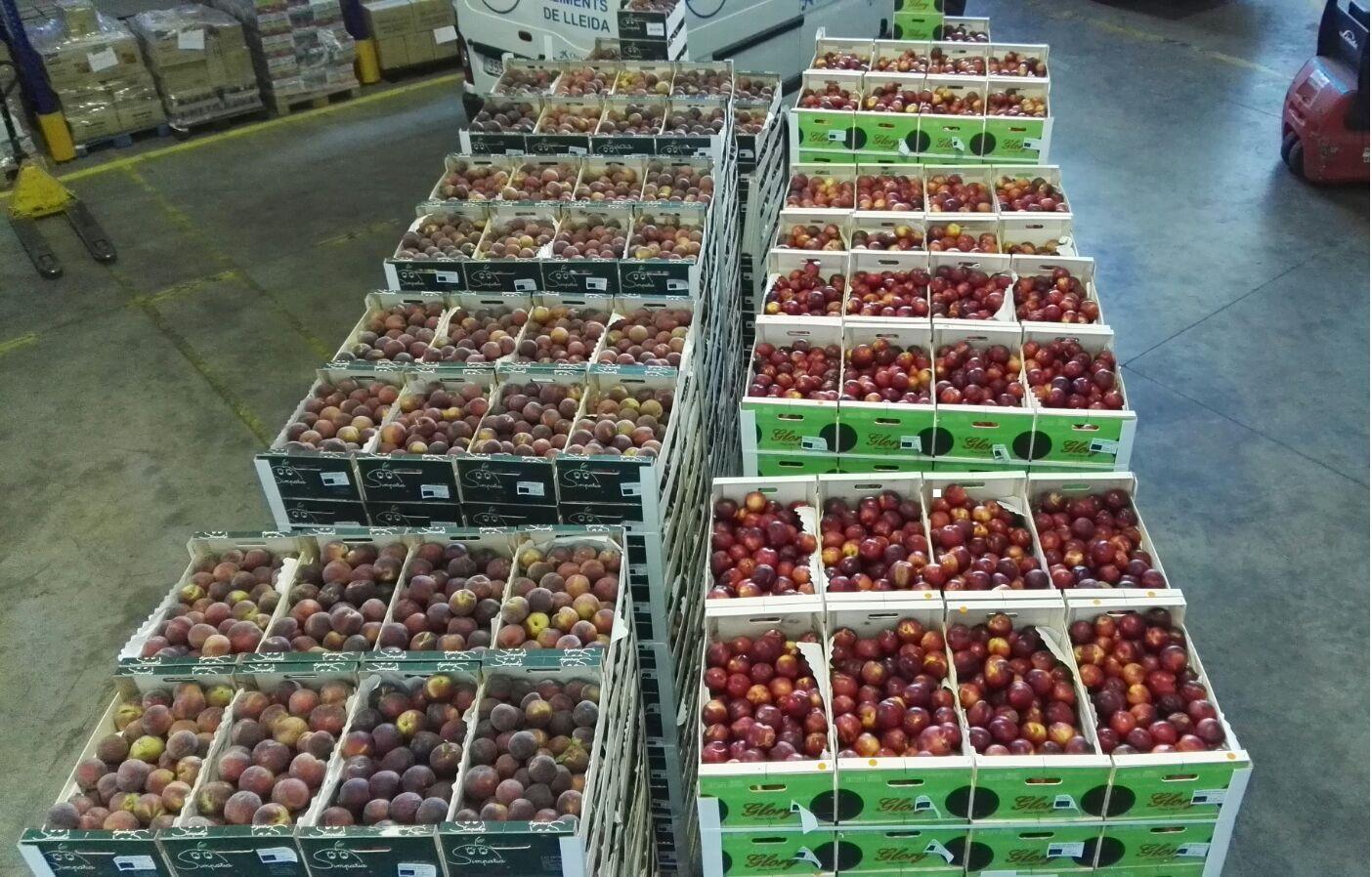 Donació de fruita i verdura retirada de mercat