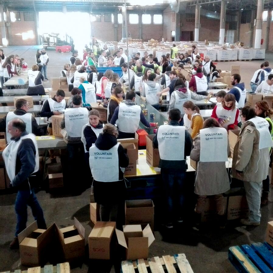 Classificació d'aliments al Pavelló 3 de Fira de Lleida