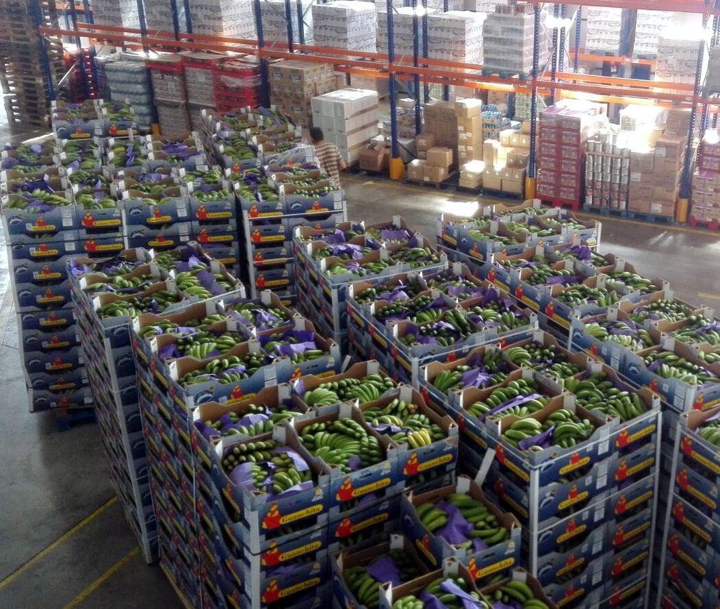 Donació de plàtans de Canàries