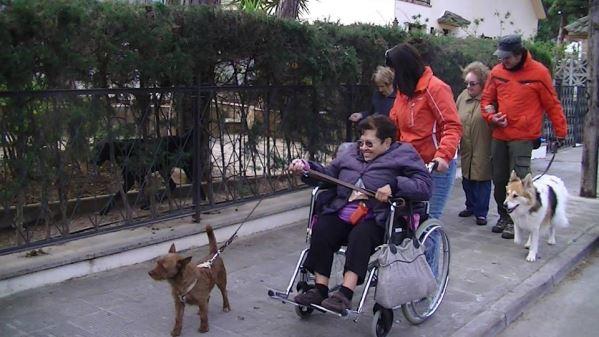 El programa de actividades asistidas con perros potencia el bienestar emocional y los vínculos afectivos de los residentes