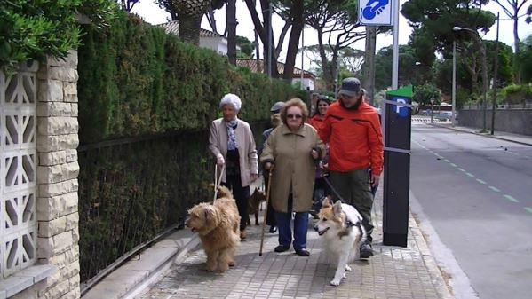Las actividades asistidas con perros suponen un aliciente para el ejercicio físico de aquellos residentes con autonomía personal