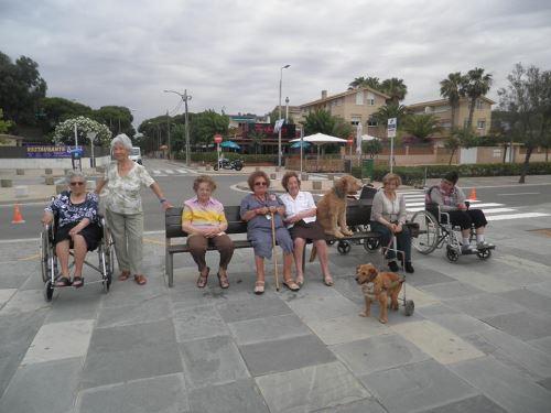 Otra salida con los perros de Canópolis