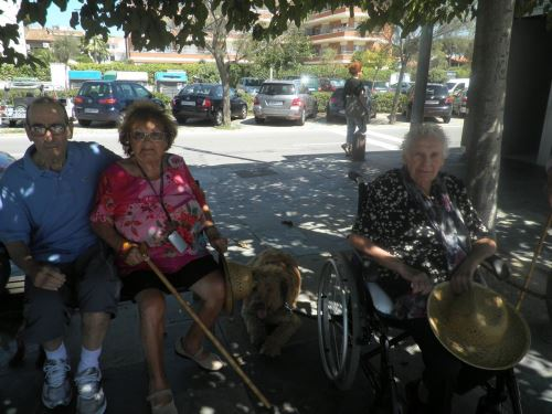 Un momento descanso de los residentes del geriátrico El Recer de Castelldefels en el paseo marítimo con el personal del centro, los perros y los voluntarios de Trifolium