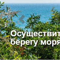 Creación y diseño del web de NataliDom, agente inmobiliario ruso de la Costa Dorada de Tarragona, con listado de inmuebles, casas, viviendas ya aparatemntos.
