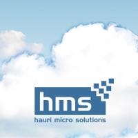 Modernidad, dinamismo y creatividad son los elementos que forman parte del nuevo microsite diseñado para la empresa Hauri Micro Solutions.