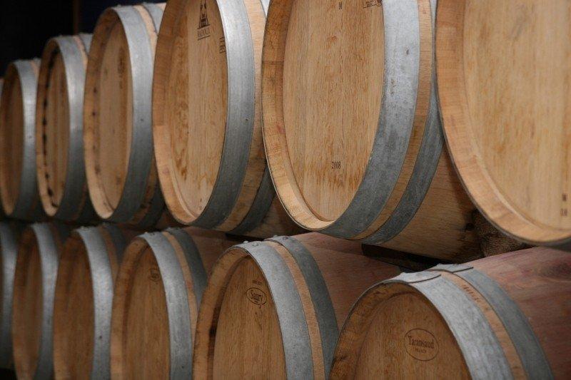 Quines són les plagues més importants de la indústria del vi i com es poden combatre?