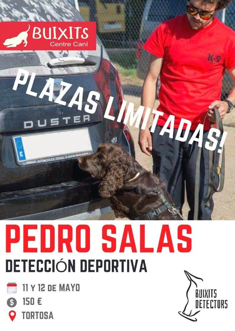 Detecció esportiva - Pedro Salas