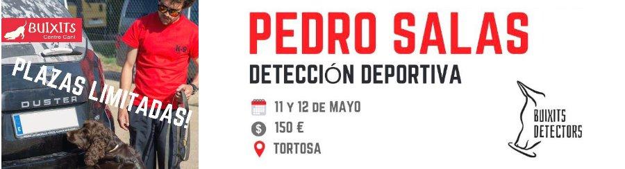 detecció_deportiva_pedro_salas