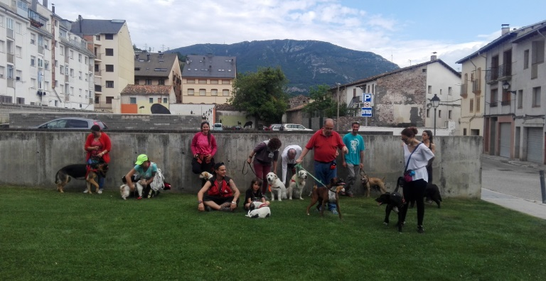 Club Social Buixits Alt Pirineu, club caní Vilaller