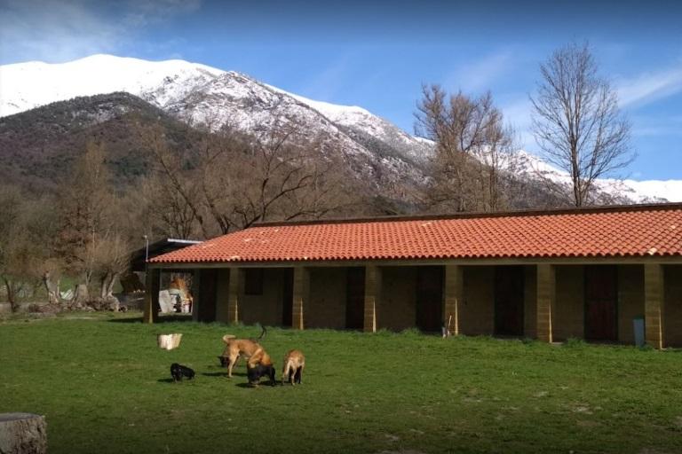 Alt Pirineu (Vilaller)