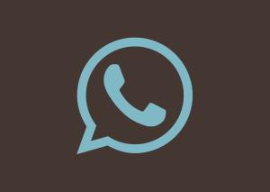 El nou rumb de WhatsApp: Més enllà de la missatgeria instantània