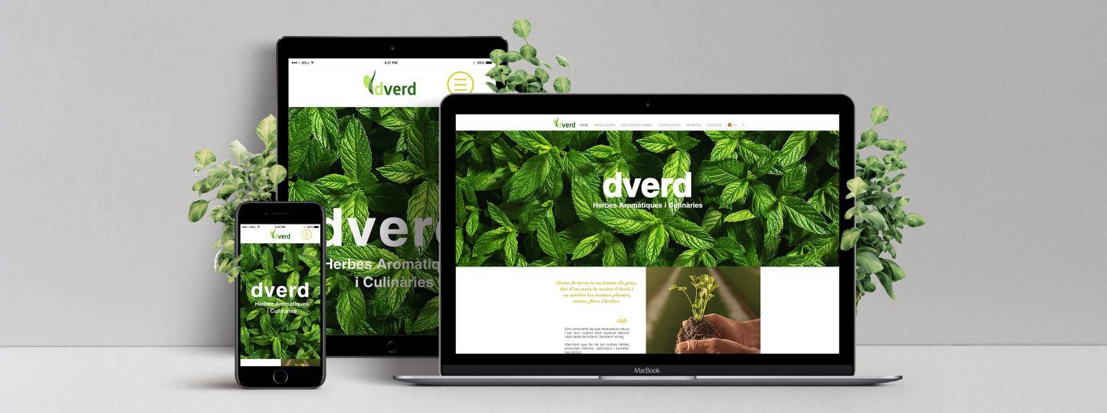Web Redflavors | Dverd