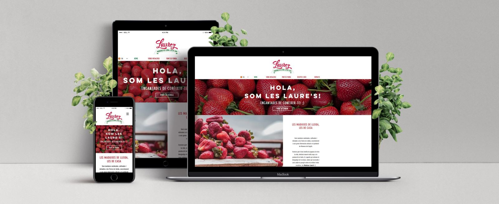 Web Laures | Red Flavors