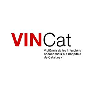 Web de prueba online de enfermeria, medicina, podología y odontología del Vincat - Snik Comunicación
