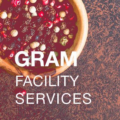 Diseño web para Gram Facility Services