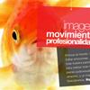Desarrollo del web de RecFish Producciones Audiovisuales- Snik Comunicación