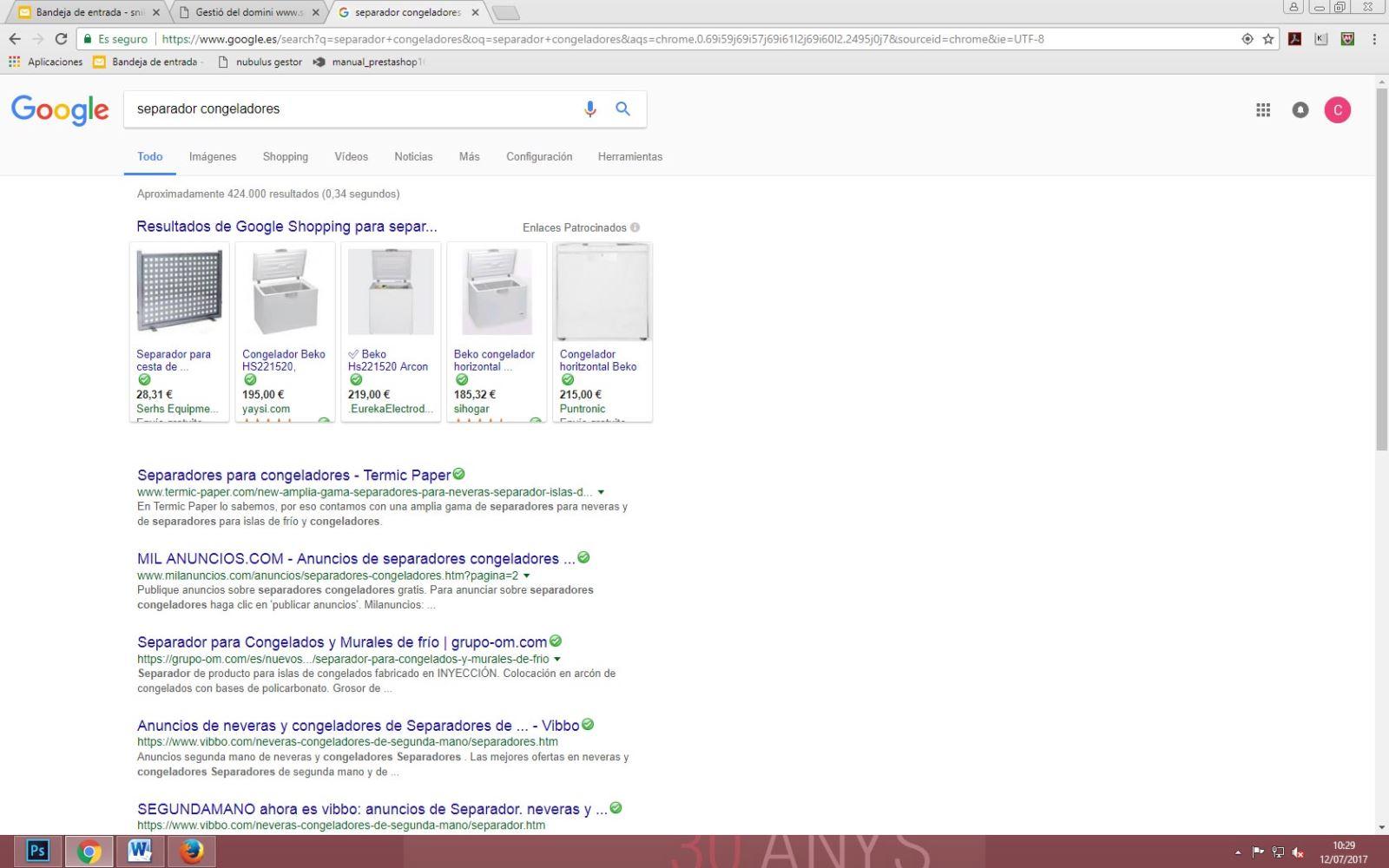 Salir el primero en Google, trabajo de posicionamiento, creación de contenidos e indexación del web de Termic Paper